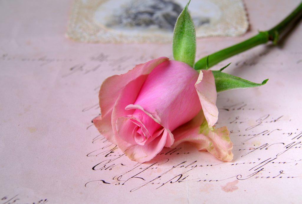 alter Liebesbrief mit rosa Rose