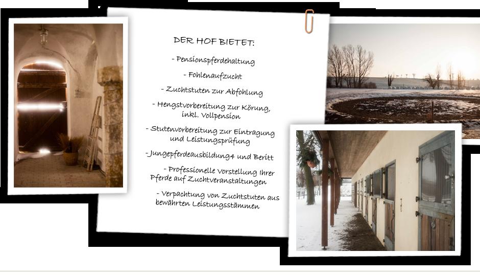 Gestüt am Kirchberg - Location vom Fotoshooting