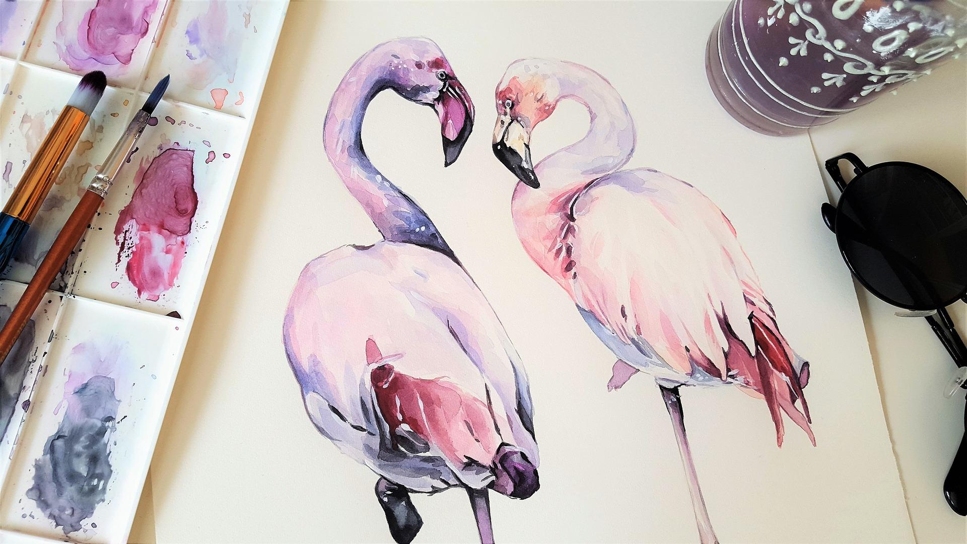 Rosafarbene Flamingos