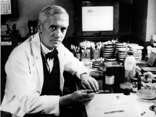 Alexander Fleming, Entdecker der antibiotischen Wirksamkeit von Penicillinen