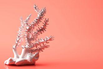 Living Coral, Pantone Farbe des Jahres 2019