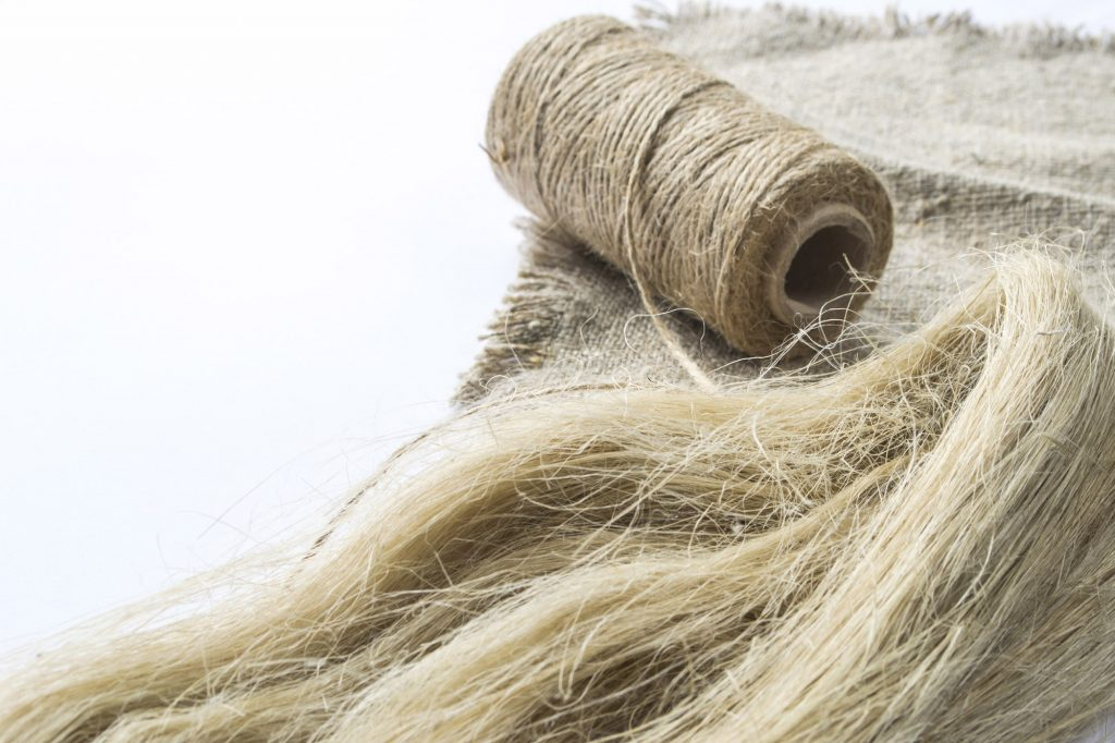 Flachs-Fasern für die Herstellung von Leinen