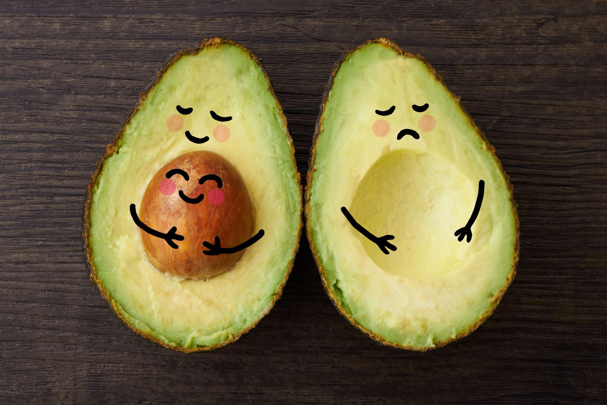 Avocado fruchtbar und unfruchtbar stilisiert