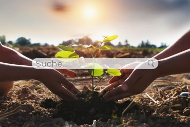 Suchmaschine Baum pflanzen